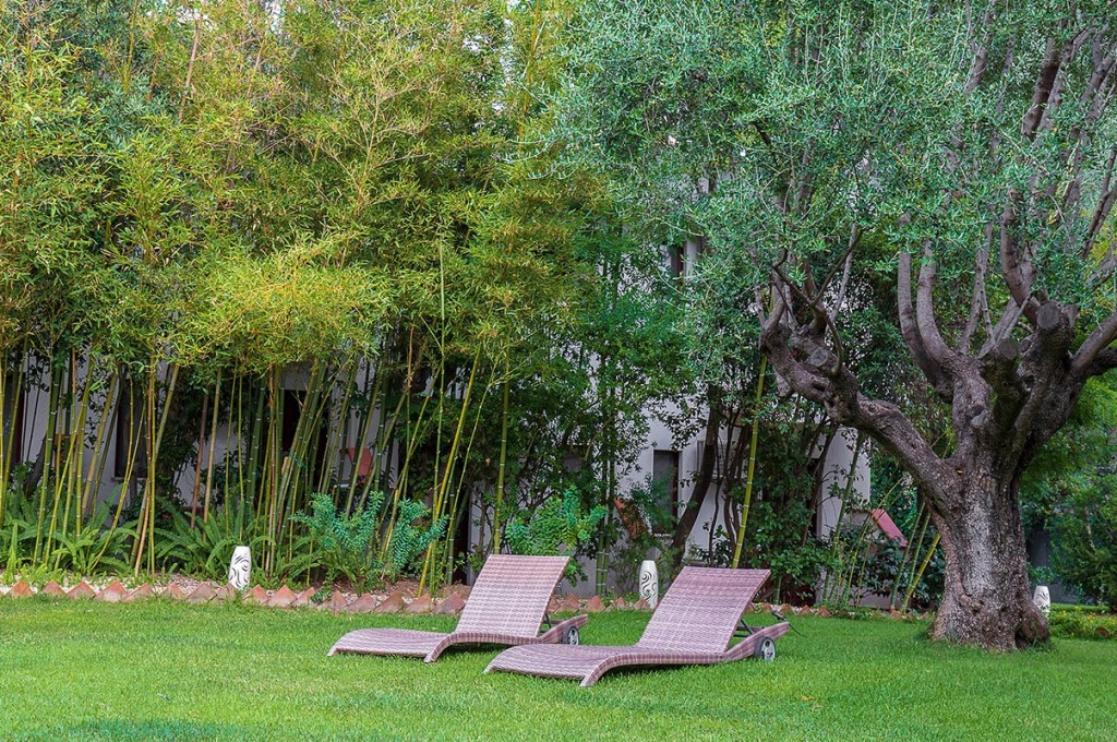 albergo-santa-maria-santa-maria-navarrese-giardino-relax-bambu